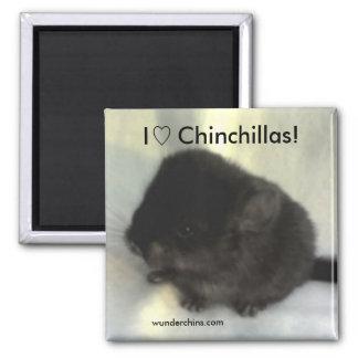 De Magneet van de Liefde van de chinchilla