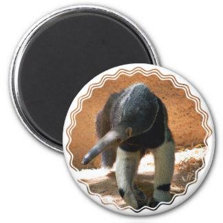 De Magneet van de miereneter