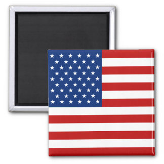 De Magneet van de Vlag van de V.S.
