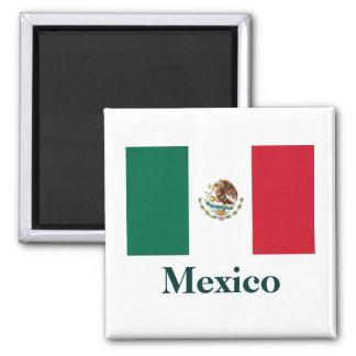 De Magneet van de Vlag van Mexico