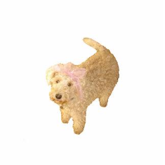 De Magneet van het Lake District Terrier Fotobeeldje Magneet