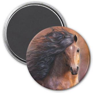 De Magneet van het Paard van Morgan