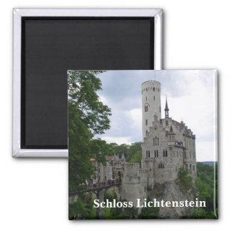 De Magneet van Lichtenstein van Schloss