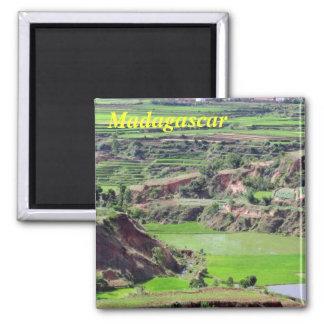 De magneet van Madagascar