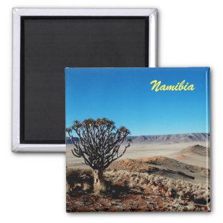 De Magneet van Namibië