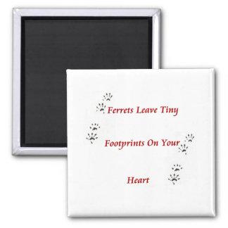De Magneet van Pawprints van het fret