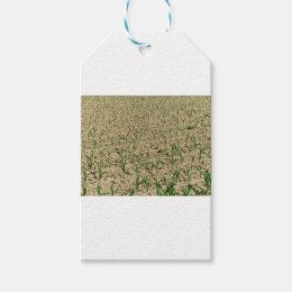 De maïsgebied van de zoete maïs in vroeg stadium cadeaulabel