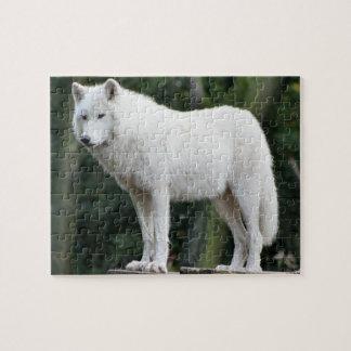 De majestueuze Witte Puzzel van de Wolf Puzzel