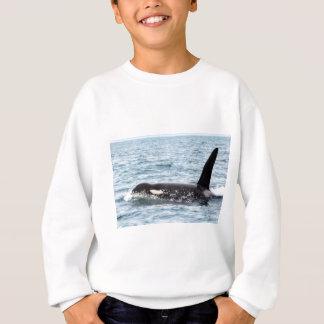 De Mannelijke Walvis San Juan Island van de Orka Trui