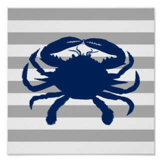 De marineblauwe Grijze en Witte Streep van de Krab Poster