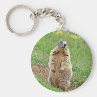 De marmot van de schildwacht sleutelhanger