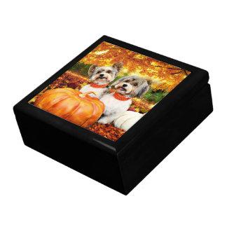 De Maximum Thanksgiving van de herfst - & Leeuw - Decoratiedoosje