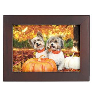 De Maximum Thanksgiving van de herfst - & Leeuw - Herinneringen Doosje