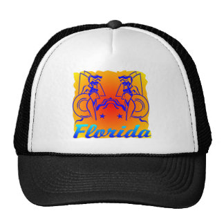 De Meisjes van het Strand van Florida Pet Met Netje
