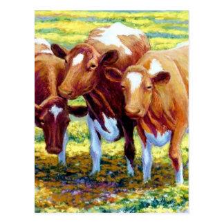 De melkkoe van koeien in het Schilderen van het Briefkaart