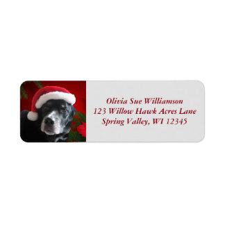 De Mengeling van de kerstman hond-Lab/Rott met Etiket