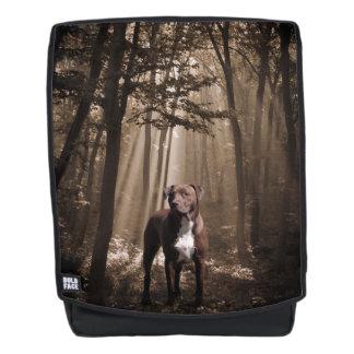 De mengelingshond van de kuil in bos rugtassen
