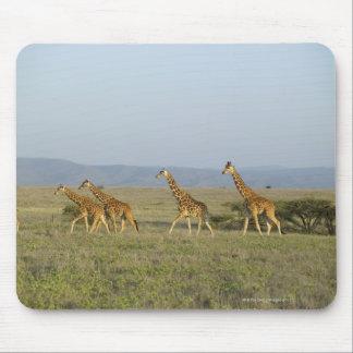 De Milieubescherming van het Wild van Lewa, Kenia Muismat