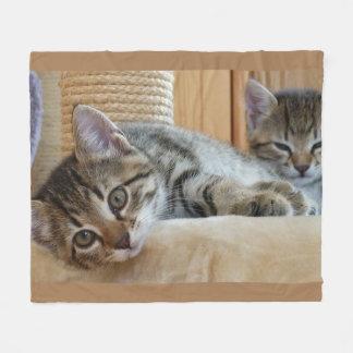 De Minnaars van de kat scheren Deken