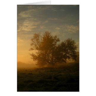 De Mist van de herfst Briefkaarten 0