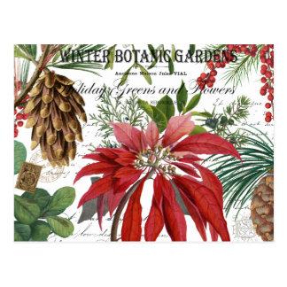De moderne wijnoogst wintergarden bloemen briefkaart