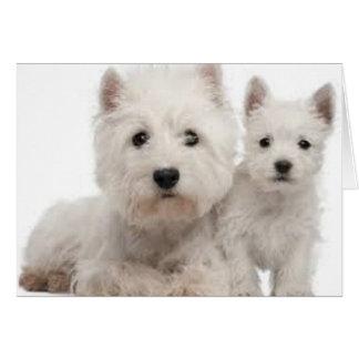 De Moeder en het Puppy van Westie Briefkaarten 0