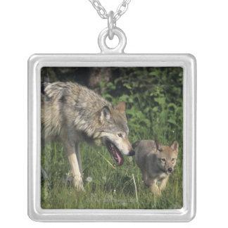 De moeder van de wolf met jong jong zilver vergulden ketting