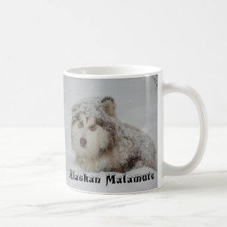 De mok Malamute van Alaska
