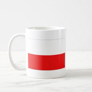 De Mok van de Kaart van de Vlag ~ van Polen