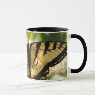 De Mok van de vlinder