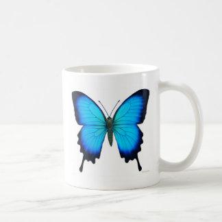 De Mok van de Vlinder van Ulysses van Papilio
