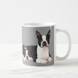 De Mok van de Vrienden van Boston Terrier