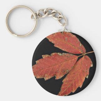De mooie bladeren van het Gifsumak Sleutelhanger