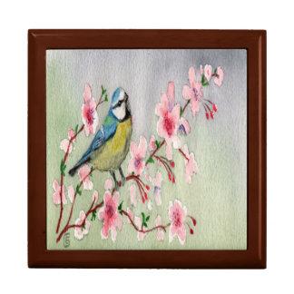 De mooie Blauwe Vogel van de Mees op de Boom van Decoratiedoosje