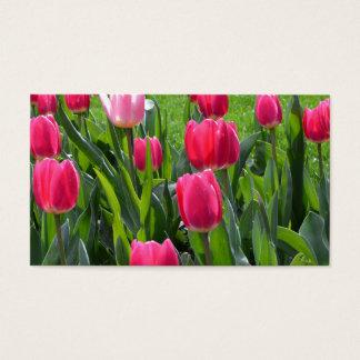 de mooie bloemen van de de lente roze tulp. tuin visitekaartjes