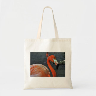 De mooie Canvas tassen van het Canvas van de