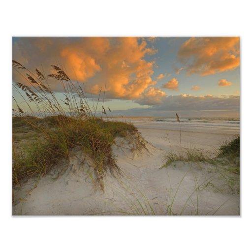De mooie Duinen van het Zand in Daytona Beach, FL Fotoafdruk