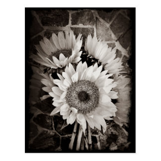 De mooie Foto van het Boeket van de Zonnebloem in Briefkaart