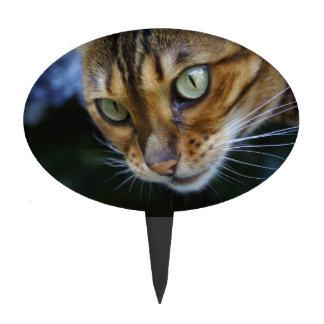 De mooie Kat van Bengalen Taart Prikker