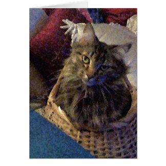 De mooie Kat van het Kat van de Wasbeer van Maine Briefkaarten 0