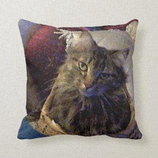 De mooie Kat van het Kat van de Wasbeer van Maine Sierkussen