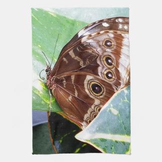 de mooie motten bruin tan van de oogvlinder handdoeken