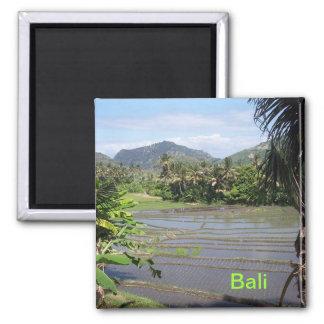 De mooie padievelden van Bali Vierkante Magneet