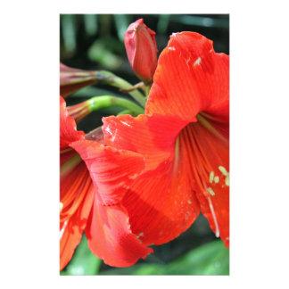 De mooie Rode Foto van de Bloem Briefpapier