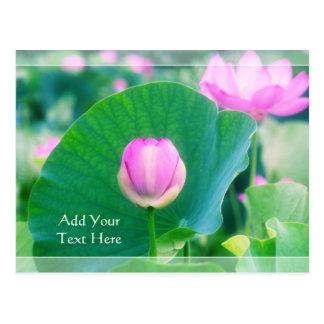 De mooie Roze Bloesem van het Blad van de Bloem Briefkaart