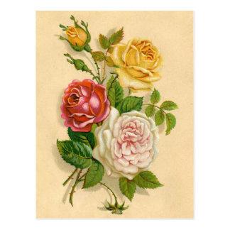 De mooie Wijnoogst nam Illustratie toe Briefkaart