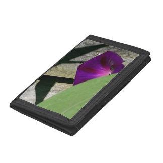 De mooie Zwarte BloemenPortefeuille van de Foto