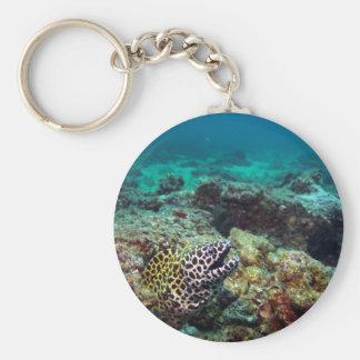De moray paling van de honingraat sleutelhanger