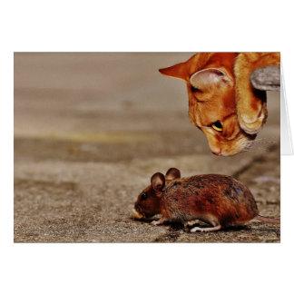 De Muis die van de kat u eten Groet missen Wenskaart