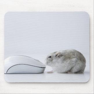 De muis van de hamster en van de Computer Muismatten